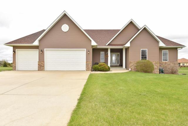 811 Rose Drive, Ellendale, MN 56026 (MLS #5229543) :: The Hergenrother Realty Group