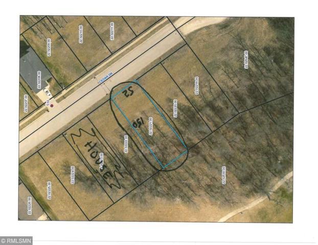 509 Cedar Drive, Lake City, MN 55041 (#5229735) :: House Hunters Minnesota- Keller Williams Classic Realty NW