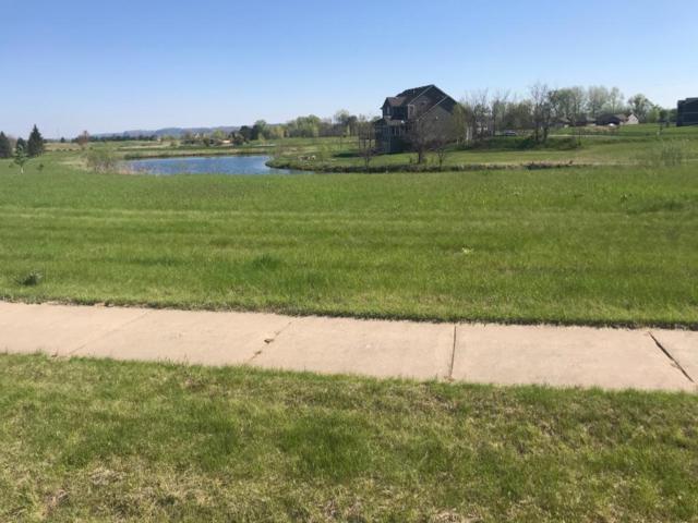 109 Emerald Lake Drive, Lake City, MN 55041 (#5231084) :: House Hunters Minnesota- Keller Williams Classic Realty NW
