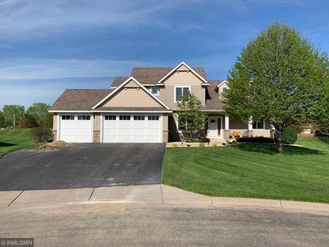 9521 Dunes Court, Cottage Grove, MN 55016 (#5231371) :: Olsen Real Estate Group