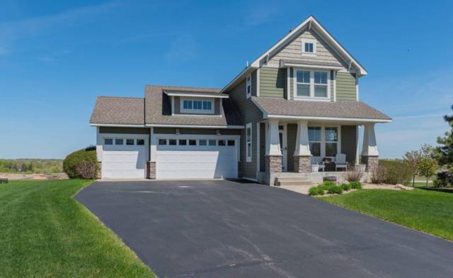 24386 Superior Drive, Rogers, MN 55374 (#5231899) :: House Hunters Minnesota- Keller Williams Classic Realty NW