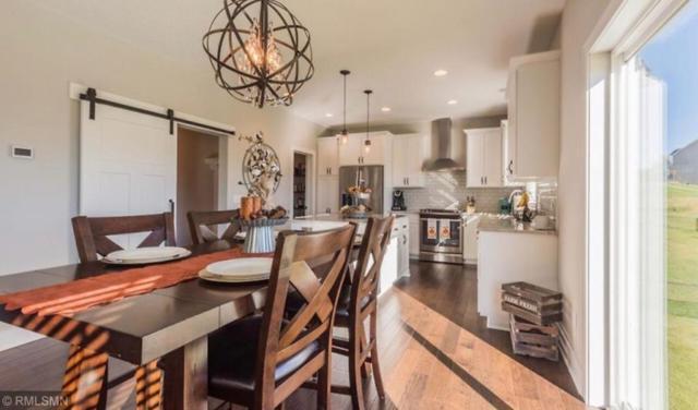 8644 Bison Avenue, Monticello, MN 55362 (#5231981) :: Olsen Real Estate Group