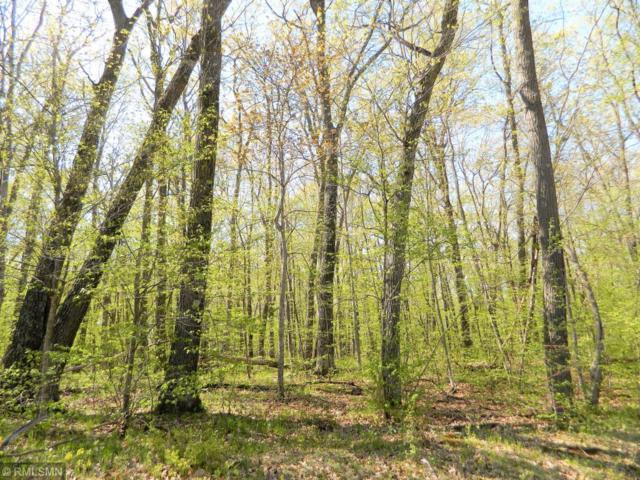 Lot 19 103rd Street, Frederic, WI 54837 (#5233988) :: The Michael Kaslow Team