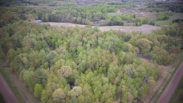 45xxx Evergreen Avenue, Harris, MN 55032 (MLS #5234331) :: The Hergenrother Realty Group