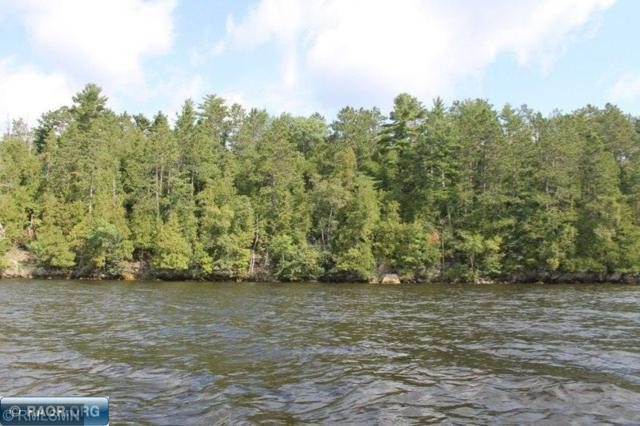 Parcel 4 Ely Island, Breitung Twp, MN 55790 (#5234584) :: The Michael Kaslow Team