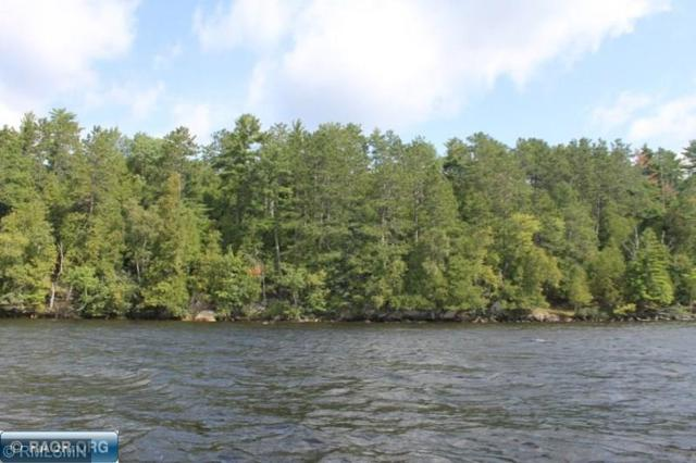 Parcel 5 Ely Island, Breitung Twp, MN 55790 (#5234655) :: The Michael Kaslow Team