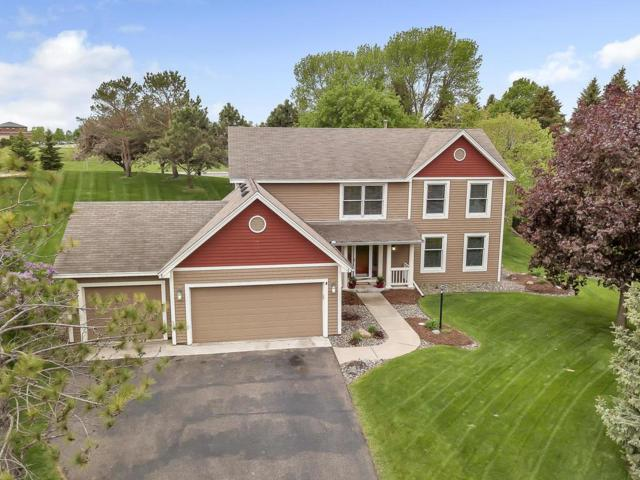 10045 Raleigh Court, Woodbury, MN 55129 (#5237034) :: Olsen Real Estate Group