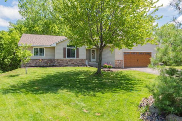 3080 Maple Leaf Court, Little Canada, MN 55109 (#5238405) :: Hergenrother Group