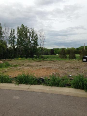 1361 Meadow Lane, Shakopee, MN 55379 (#5238486) :: Bre Berry & Company