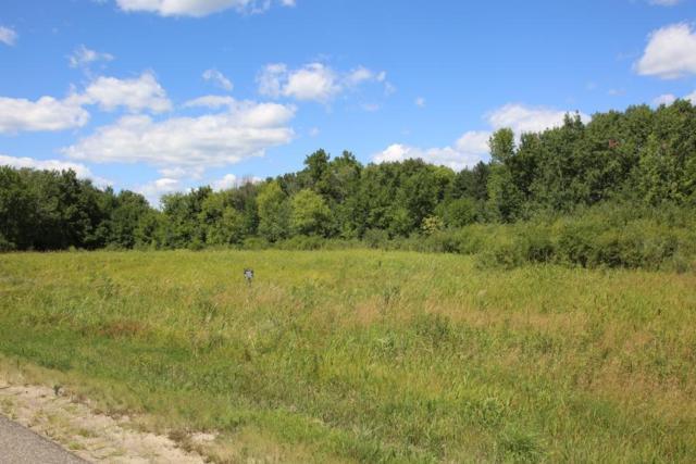 9131 Lake Drive NE, Columbus, MN 55025 (#5238506) :: House Hunters Minnesota- Keller Williams Classic Realty NW