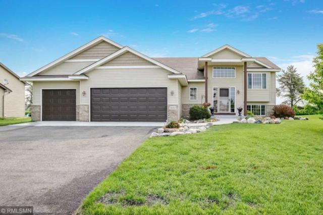 1012 Mallard Street NE, Hanover, MN 55341 (#5238939) :: House Hunters Minnesota- Keller Williams Classic Realty NW
