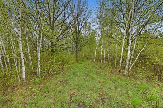 11639 280th Street, Onamia, MN 56359 (MLS #5239603) :: The Hergenrother Realty Group