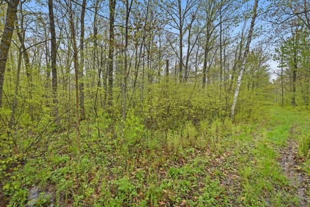 XXX County Road 20, Onamia, MN 56359 (MLS #5239638) :: The Hergenrother Realty Group