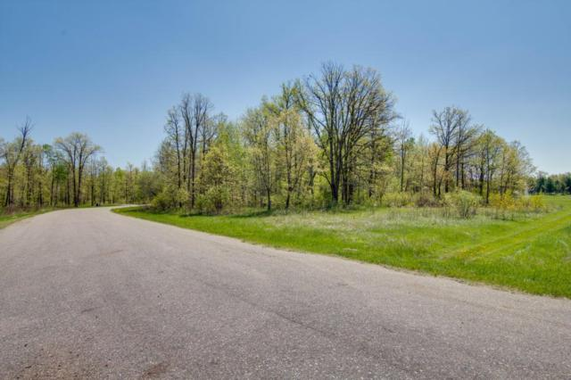 Lot 12 Eagle Drive NW, Leech Lake Twp, MN 56484 (#5240626) :: The Sarenpa Team