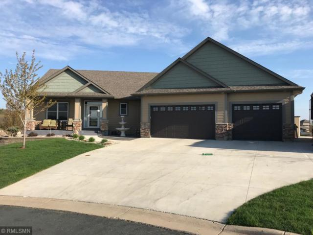 1103 Olivia Street SE, New Prague, MN 56071 (MLS #5241796) :: The Hergenrother Realty Group