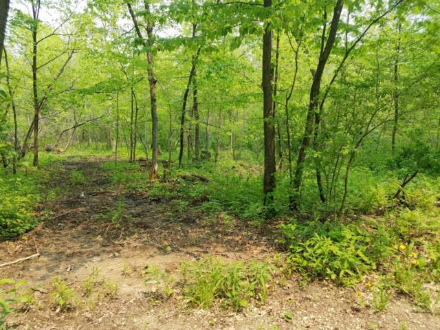 TBD 412th Avenue, Mazeppa, MN 55956 (MLS #5242455) :: The Hergenrother Realty Group
