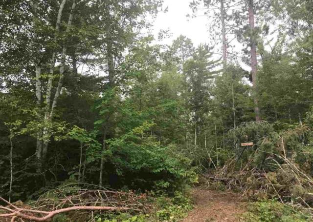 Parcels A&B Niles Bay Forest Rd, Buyck, MN 55771 (#5243266) :: House Hunters Minnesota- Keller Williams Classic Realty NW