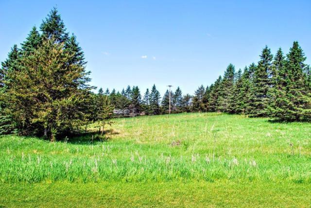 XXX Ranchette Drive, Breezy Point, MN 56472 (#5244277) :: The Michael Kaslow Team