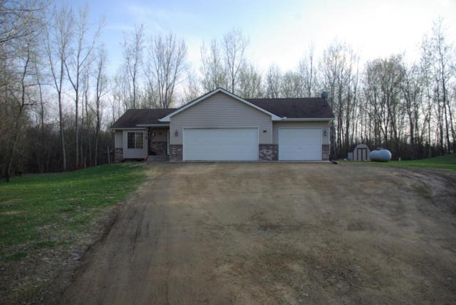 2345 445th Street, Harris, MN 55032 (MLS #5244468) :: The Hergenrother Realty Group