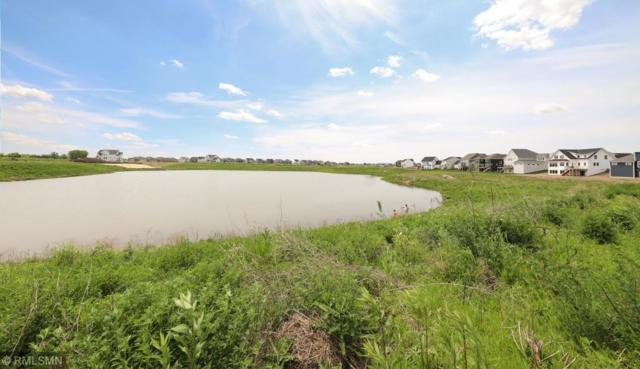 16334 Dryden Road, Lakeville, MN 55044 (#5245527) :: The Preferred Home Team