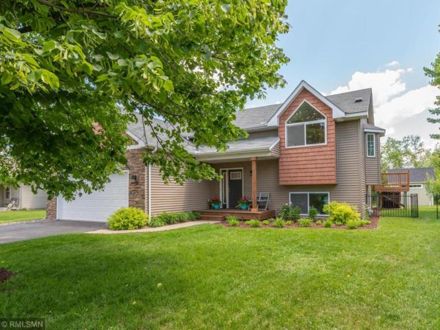 12601 Ensign Avenue, Savage, MN 55378 (#5245872) :: The Preferred Home Team