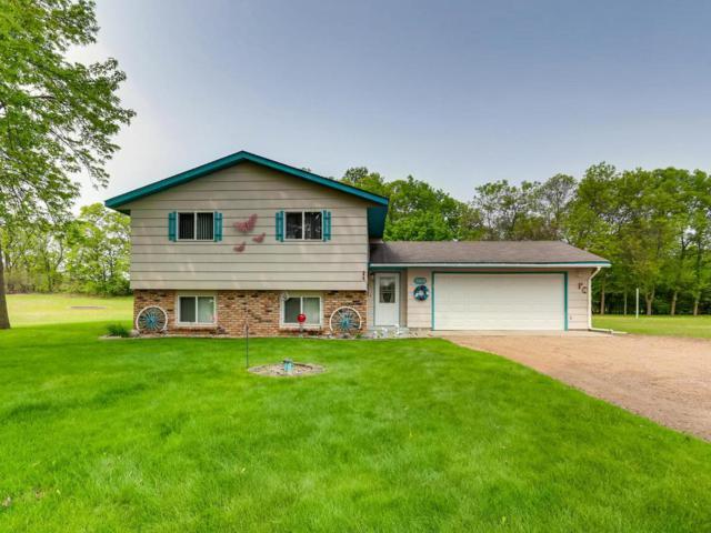 15028 93rd Circle NE, Otsego, MN 55330 (#5245917) :: House Hunters Minnesota- Keller Williams Classic Realty NW