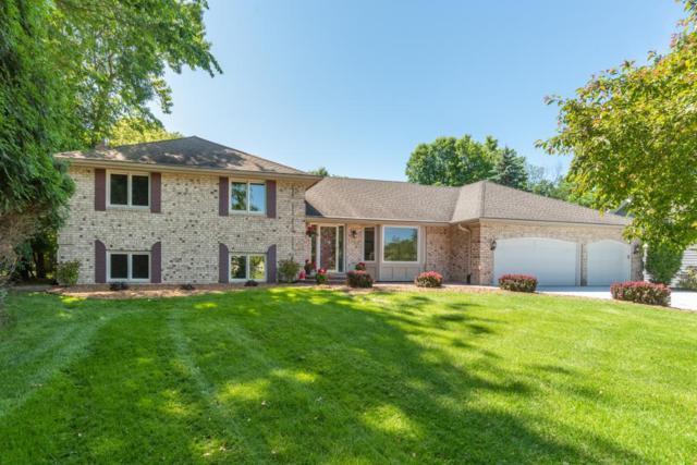 7809 W 99th Street, Bloomington, MN 55438 (#5246221) :: The Preferred Home Team