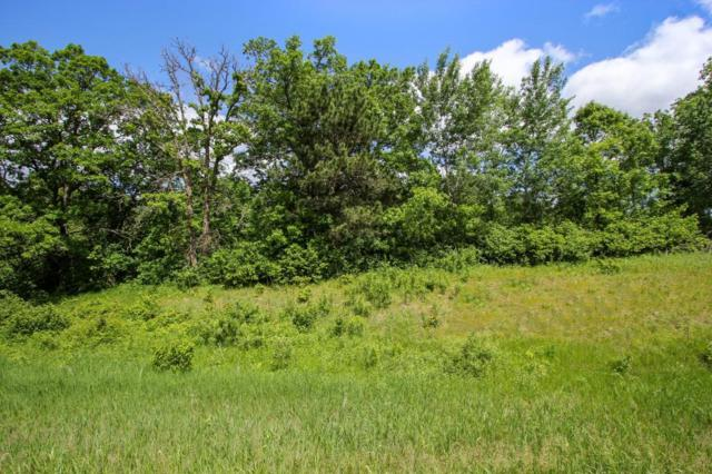 TBD County Road 28, Pillager, MN 56473 (MLS #5247427) :: The Hergenrother Realty Group
