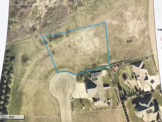 XX Milrose Lane, Albert Lea, MN 56007 (MLS #5248105) :: The Hergenrother Realty Group