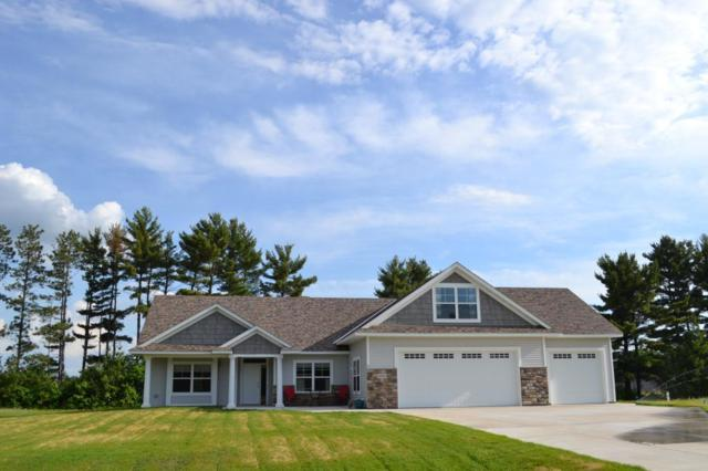 5449 389th Trail, North Branch, MN 55056 (MLS #5248244) :: The Hergenrother Realty Group