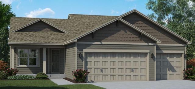 11217 Pierce Street NE, Blaine, MN 55434 (#5248712) :: House Hunters Minnesota- Keller Williams Classic Realty NW