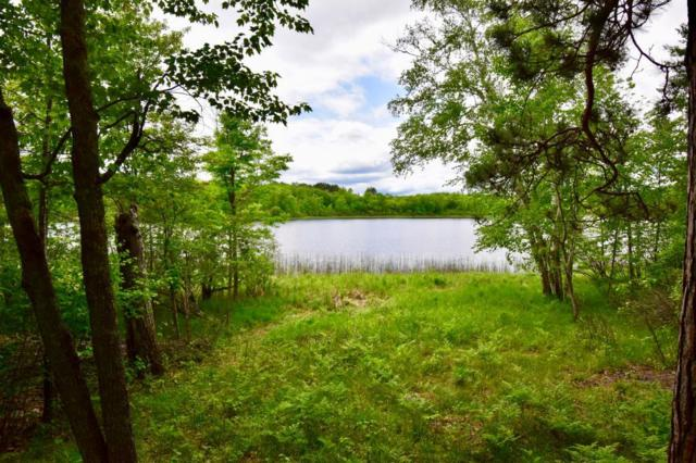 TBD Bigfork Trail, Grand Rapids, MN 55744 (MLS #5248866) :: The Hergenrother Realty Group