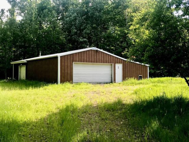 26821 Birch Drive, Trout Lake Twp, MN 55709 (MLS #5249324) :: The Hergenrother Realty Group