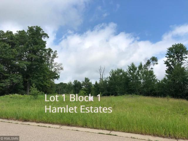 xxx1 161st Ave Ne, Ham Lake, MN 55304 (MLS #5249380) :: The Hergenrother Realty Group
