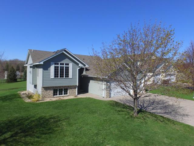 1334 Rolling Oaks Drive, Hanover, MN 55341 (#5249677) :: House Hunters Minnesota- Keller Williams Classic Realty NW