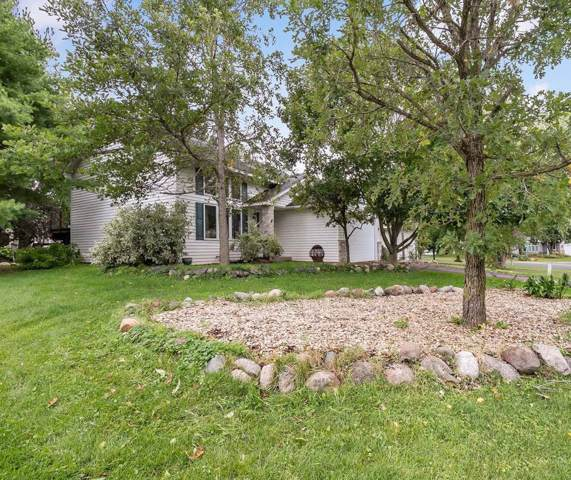 704 Summer Lane, Eagan, MN 55123 (MLS #5250052) :: The Hergenrother Realty Group