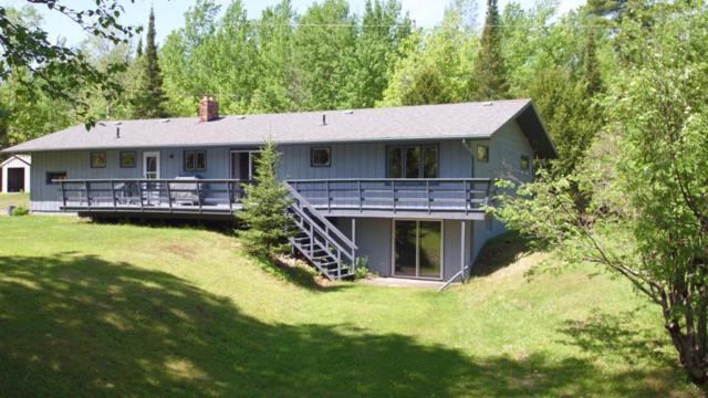 8994 W Bear Island Lake Road, Babbitt, MN 55706 (#5250097) :: The Sarenpa Team