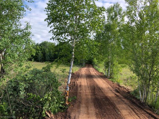 XXX Beroun Crossing Rd, Brook Park, MN 55007 (MLS #5250230) :: The Hergenrother Realty Group