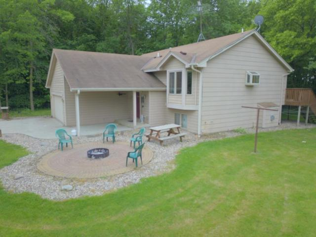 31928 Maple Haven, Lanesburgh Twp, MN 56071 (MLS #5250793) :: The Hergenrother Realty Group