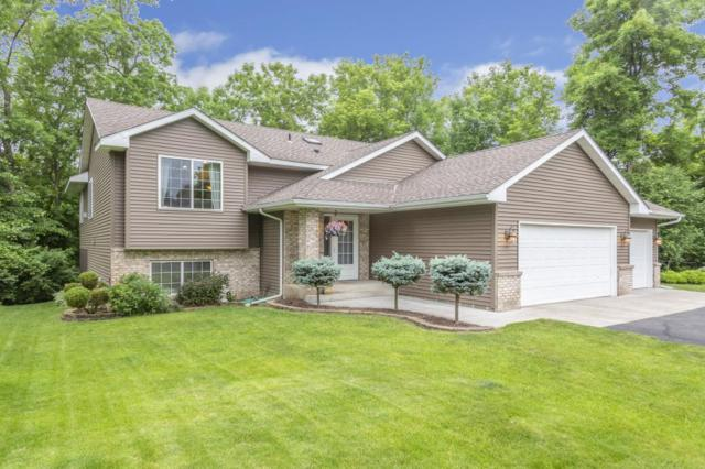39186 Riverside Court, North Branch, MN 55056 (MLS #5251508) :: The Hergenrother Realty Group