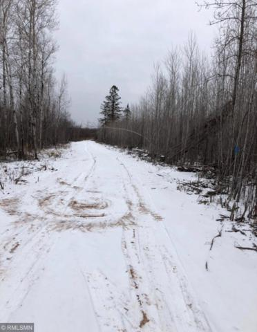 xxxx Wagon Wheel Rd, Birch Creek Twp, MN 55783 (MLS #5251568) :: The Hergenrother Realty Group
