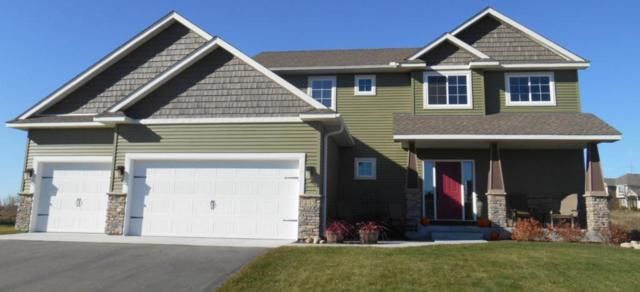 93XX 201st Court W, Faribault, MN 55021 (MLS #5251578) :: The Hergenrother Realty Group