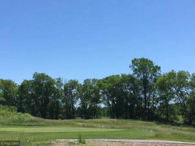 1207 Palmer Drive N, Lake Elmo, MN 55042 (#5252588) :: Bre Berry & Company