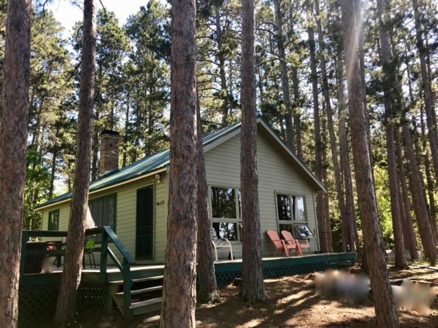 5754 Canfield Bay, Pine Island, Breitung Twp, MN 55790 (#5253384) :: The Odd Couple Team