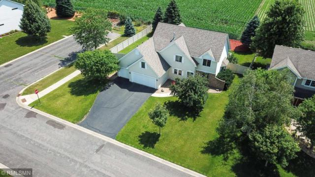 8896 Jody Circle S, Cottage Grove, MN 55016 (#5255513) :: Hergenrother Group