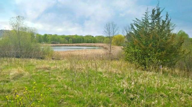 Lot 10 Blk 1 83rd Circle, Otsego, MN 55330 (#5256875) :: House Hunters Minnesota- Keller Williams Classic Realty NW