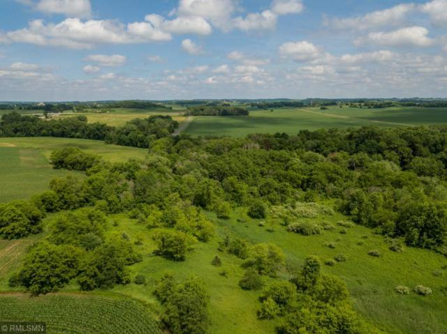xxx Trout Brook Road, Roberts, WI 54023 (#5257263) :: Hergenrother Group
