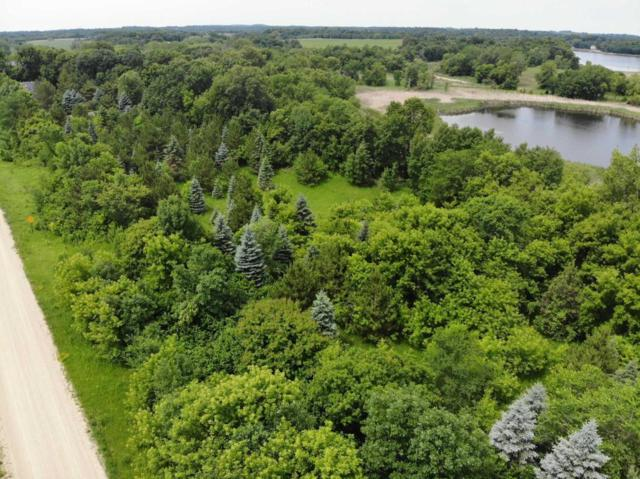 LT 5 Twin Point Road SW, Moe Twp, MN 56308 (#5257375) :: Hergenrother Group
