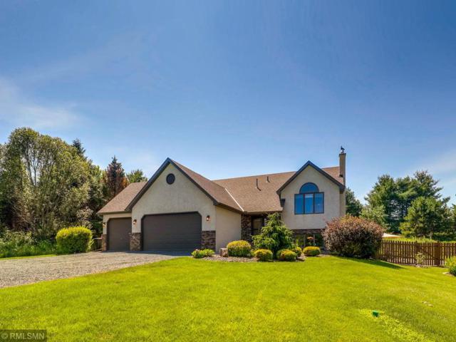 19690 Parkview Lane N, Scandia, MN 55073 (#5262530) :: Olsen Real Estate Group