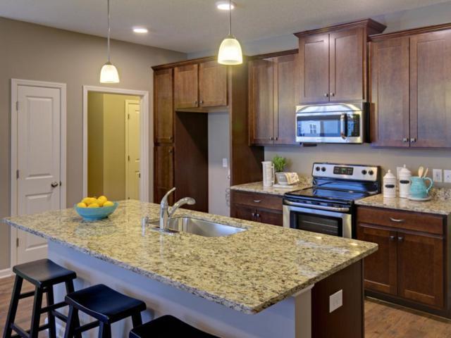 13180 Deerwood Lane N, Dayton, MN 55327 (#5262892) :: House Hunters Minnesota- Keller Williams Classic Realty NW